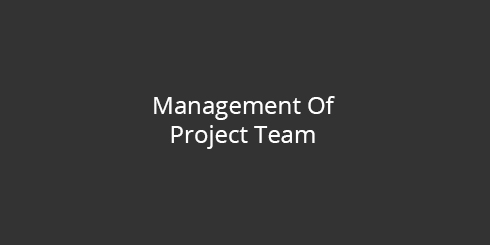 Management of project team